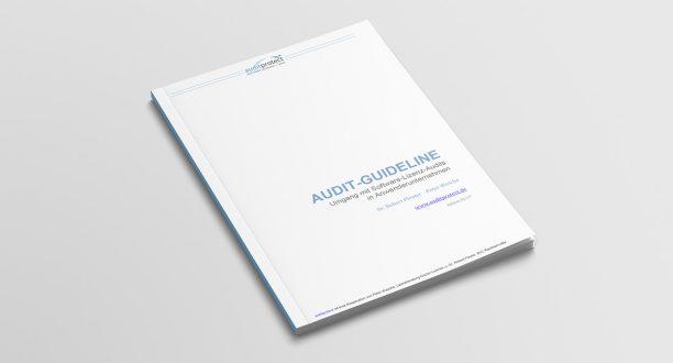 Die Audit-Guideline von Auditprotect unterstützt Sie bei Software-Lizenz-Audits